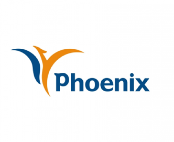 Phoenix Insurance – Loan management 365